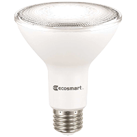 Flood and Spot LED Light Bulbs